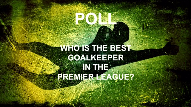 best premier league goalkeeper poll
